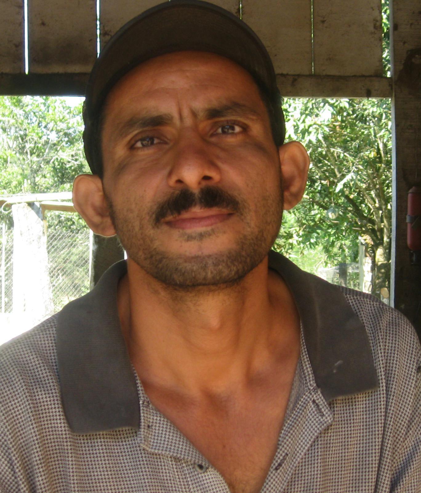 Luis Gongora